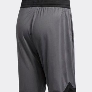 adidas Shorts - 1806 adidas SPT BOS Men's Basketball Shorts DM6969